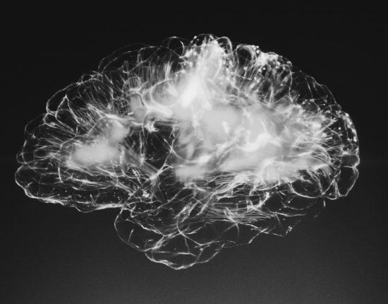 Stress im Zentrum von Krankheit und Gesundheit – Anatomie
