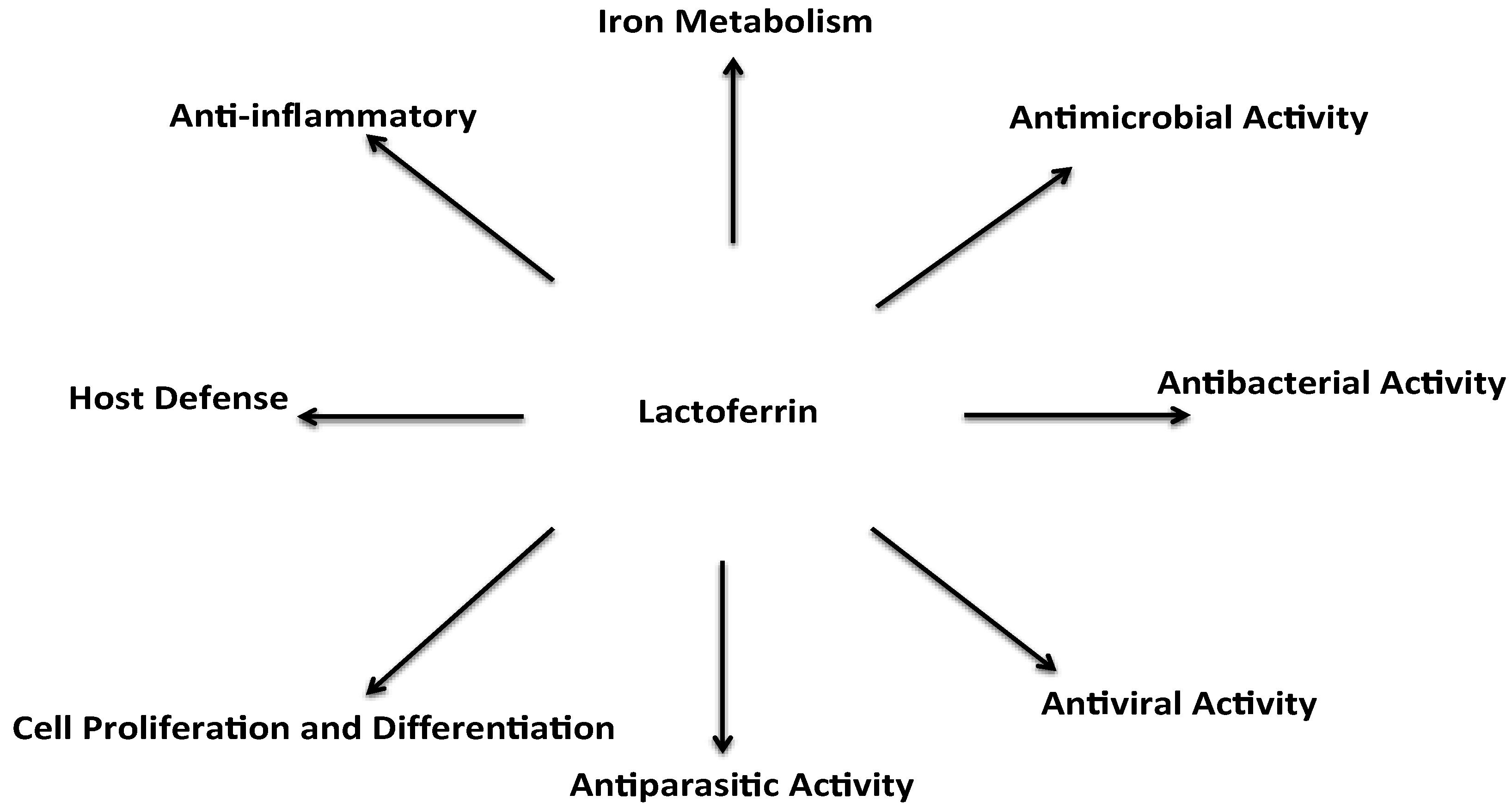 Lactoferrin Wirkung